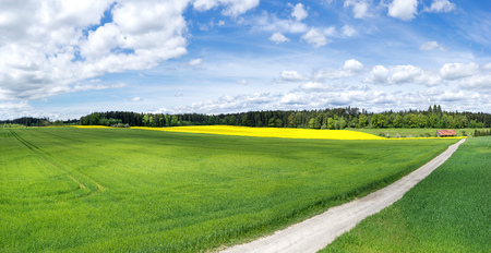View over a field with way in spring Reklamní fotografie