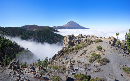 Landscape in the National park of Tenerife with Teide Stock Photo