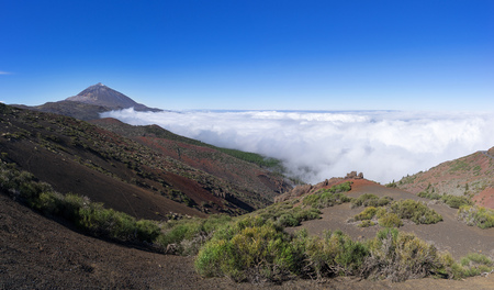 National park Tenerife - landscape with Teide