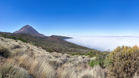 Natural landscape in the national park Tenerife with Teide