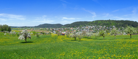 Meadow with flowers and blossoming trees on the edge of a small village in spring, taken in Trichtingen, Baden-Wuerttemberg, Germany Stock fotó