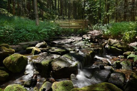 Stony creek bed in the forest with a small wooden bridge - Sankenbach ford near Baiersbronn, Black Forest, Germany Stok Fotoğraf