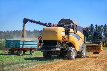 Combine harvester unloads the grain onto a trailer Archivio Fotografico - 130135867