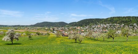 Rural scene of an idyllic spring landscape with village, taken in Trichtingen in South Germany