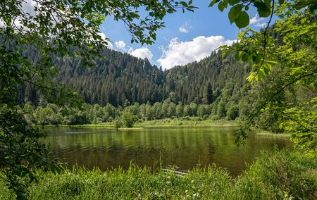 View of the lake Sankenbachsee near Baiersbronn, Black Forest, Germany