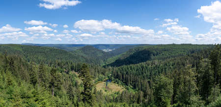 Black Forest panoramic view over the lake Ellbachsee, Germany