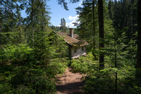 Rustic old wooden hut in the forest - mountain shelter Ellbachseehütte near lake Ellbachsee in the Black Forest