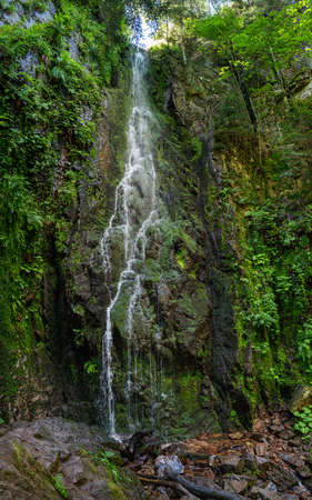 Burgbach Waterfall near Bad Rippoldsau-Schapbach in the Black Forest, Germany - portrait format panorama in summer