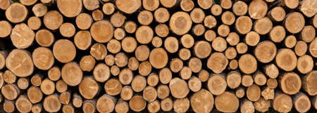 Stack of sawed tree trunks in panoramic close-up - wood industry background