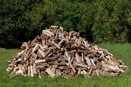Big pile of firewood in the grass of a meadow in front of dense green bushes Foto de archivo