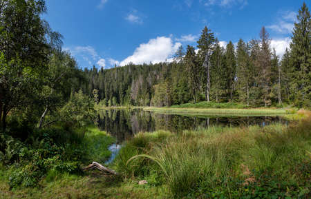 Lake Buhlbachsee in the National Park Black Forest near Baiersbronn, Germany