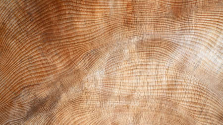 Brown wood in close-up with abstract, weathered, cracked texture