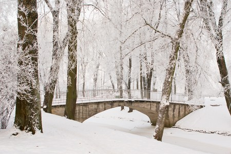 Bridge over channel in snowy park at Jelgava palace, Latvia photo