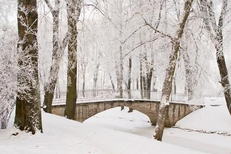 covered bridge': Bridge over channel in snowy park at Jelgava palace, Latvia