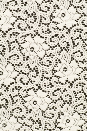 lace background: White textile background with stylized flowers pattern