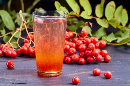 sorb: Glass of drink with syrup of rowan and fresh rowan berries on dark wooden table. Stock Photo