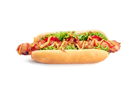 Hot dog with long sausage and vegetables on white