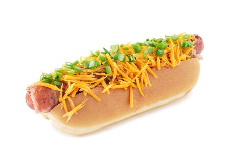 Juicy hot dog with cheese and green onion on white Banco de Imagens