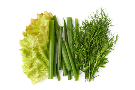 Various greenery for salad on white background