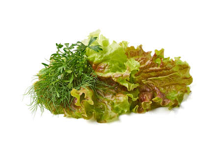 Various green salad ingredients on white