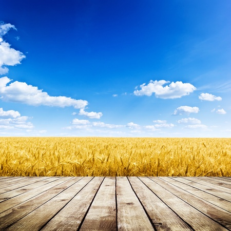 wheat: Wood floor over yellow wheat field under nice sunset cloud sky background
