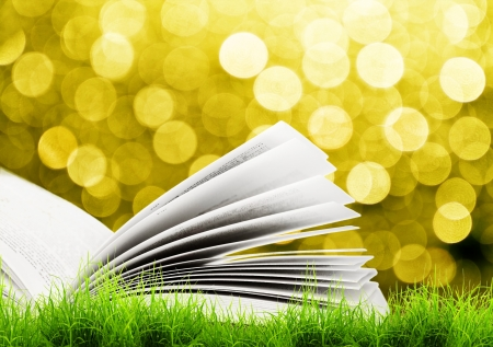 Open book in green grass over yellow sul light. Magic book