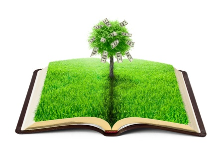 learning tree: book of nature with grass and money tree over white background