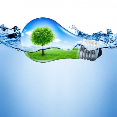 bulb fields: Lightbulb with nature inside over water  Abstract concept background Stock Photo