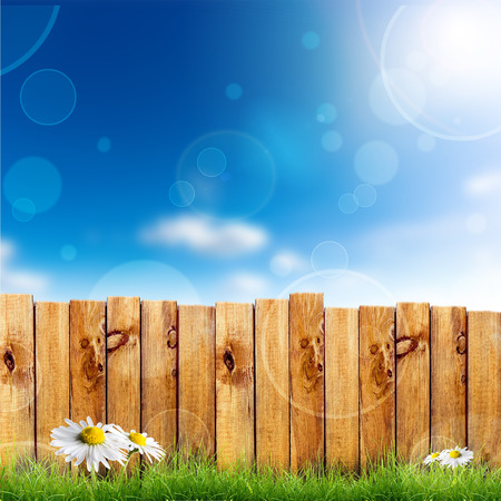 Wooden fence and green grass with white camomile flower against blue sky background photo