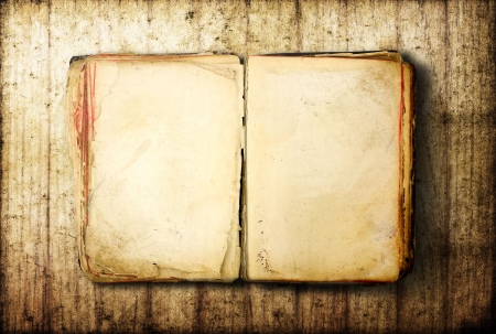old document: Open Book blank on old wood