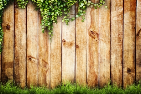 wood lawn: Fresh spring green grass and leaf plant over wood fence background
