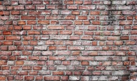 paredes de ladrillos: Old grunge ladrillo la pared de fondo