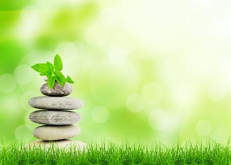 Grünes Gras mit Steinen, natürlichen Hintergrund mit selektiven Fokus. Spa-Konzept Standard-Bild
