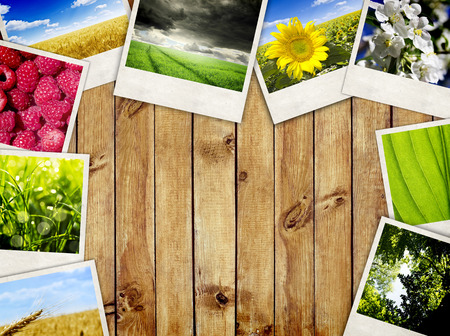 Photo frames over wooden planks background. Nature pictures photo