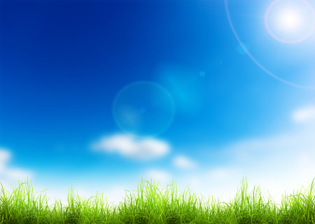 Green grass over a blue sky. Beauty natural background photo