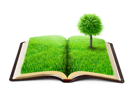 tree of knowledge: book of nature with grass and tree over white background Stock Photo