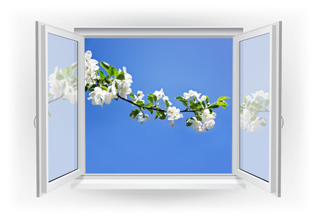 Open window with branch and blue sky. Spring background photo