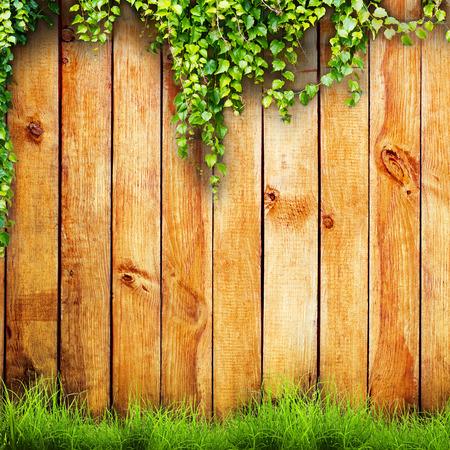 L'herbe de printemps vert frais et végétales feuilles sur fond clôture en bois Banque d'images - 27549726