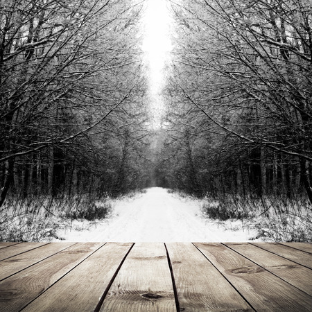 frozen winter: Winter path in the forest with wood plank floor background Stock Photo