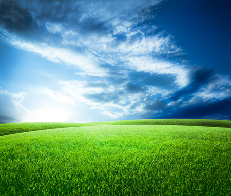 meadows: Green field under blue sky. Beauty nature background Stock Photo