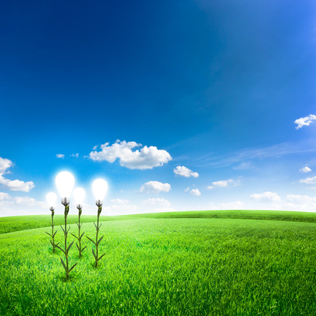 field glass: Green field with abstract flower lightbulb under blue sky. Green energy concept background