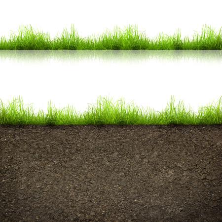 緑の芝生と白い背景で隔離土壌 写真素材