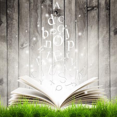 Offenes Buch mit fliegenden Buchstaben im grünen Gras über hölzerne Hintergrund. Magisches Buch