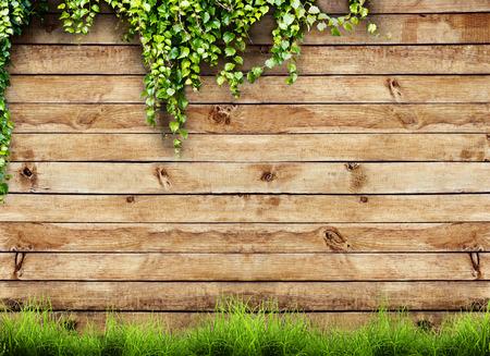 rural landscape: Fresh spring green grass and leaf plant over wood fence background