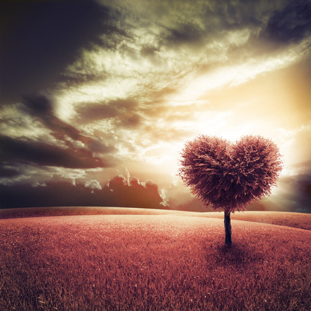 horizon over land: Abstract field with heart shape tree under blue sky. Beauty nature. Valentine concept background