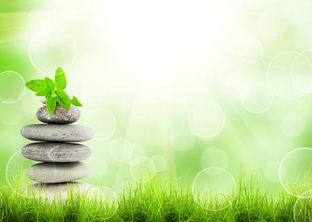 Groen gras en stapel stenen natuurlijke achtergrond met selectieve aandacht Stockfoto