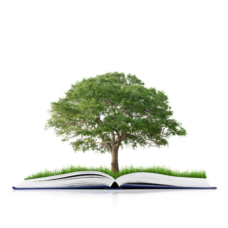 knowledge tree: book of nature with grass and tree growth on it isolated on white background