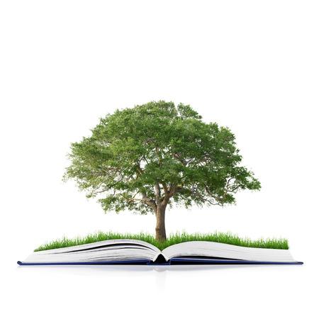 conocimiento: libro de la naturaleza con la hierba y los �rboles de crecimiento en lo aislado en fondo blanco Foto de archivo