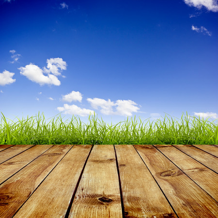 wood grass: Fresh spring green grass with blue sky and wood floor background