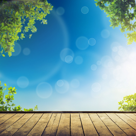Fresh spring green leaves with blue bokeh and sunlight and wood floor. Stock Photo